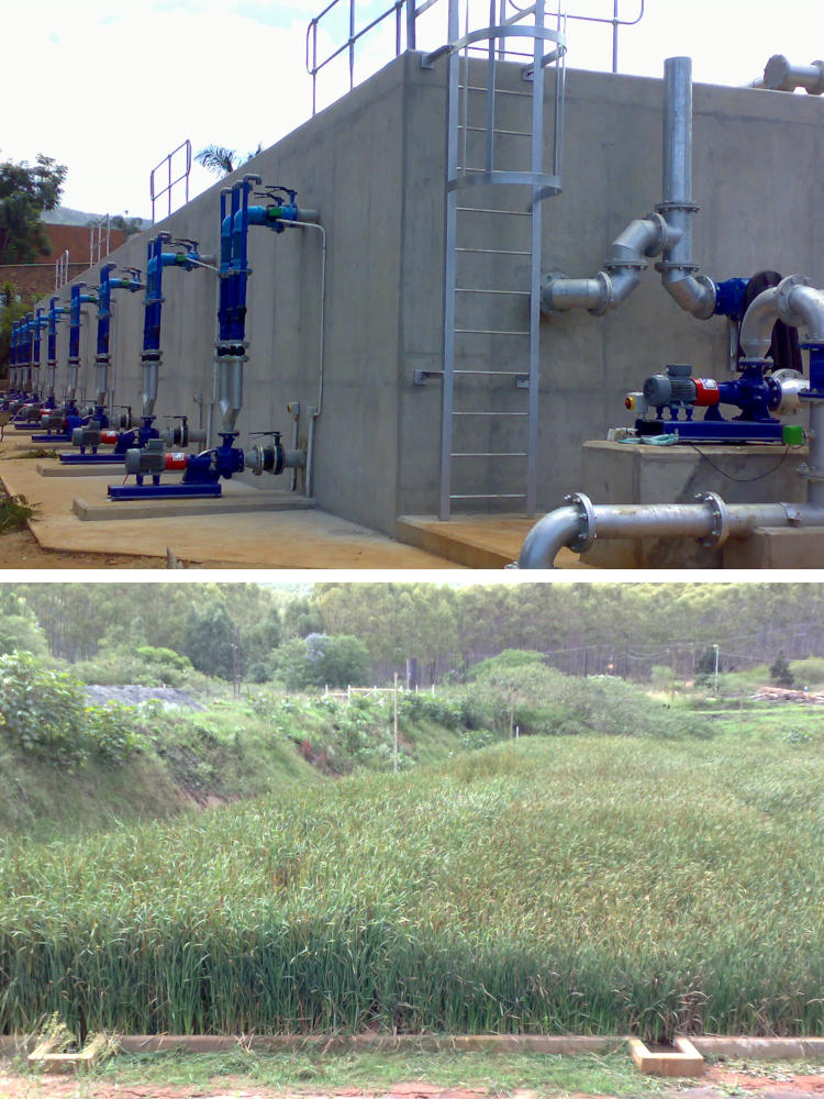 A wastewater treatment plant that consists of a Compact Bioreactor followed by Passive Constructed Wetland for vegetable waste stream treatment. Dekker Biotech, South Africa