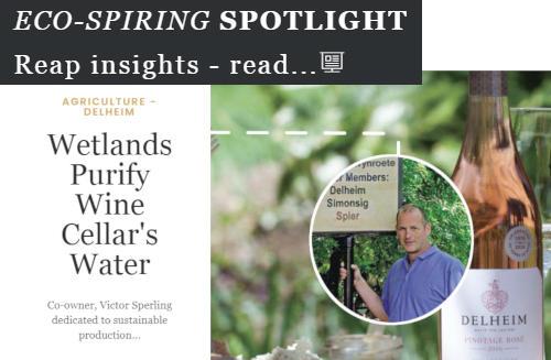 Winery wastewater bioremediation project spotlight. Dekker Biotech, South Africa