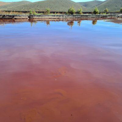 Natural bioflocculation - algae and bacteria grows in simbiosis