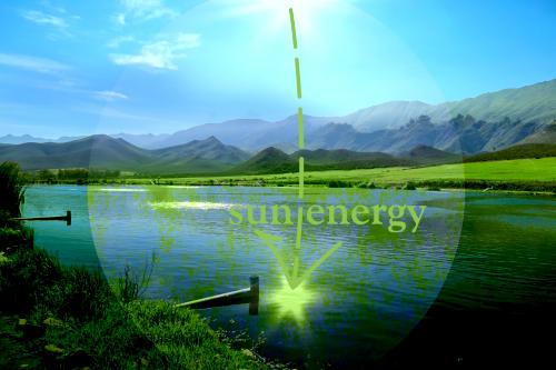 Algae wastewater treatment powered by Sun energy. Dekker Biotech, South Africa